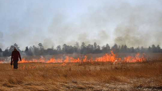 Hur planerade brännskador kan minska risken för brandfel