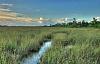 Klimatförändringarna som är möjliga för att återställa Floridas Everglades