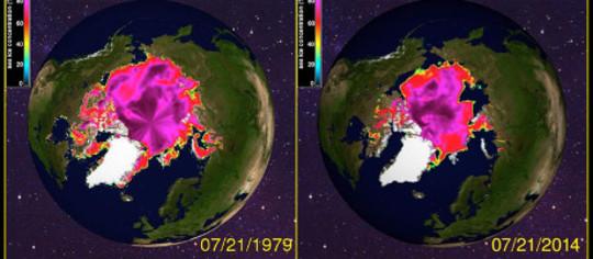 es perbandingan penuh