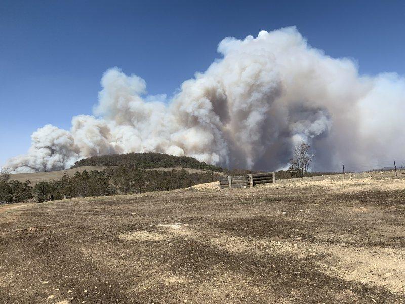 Wie Treibhausgase Australiens Buschfeuer antreiben