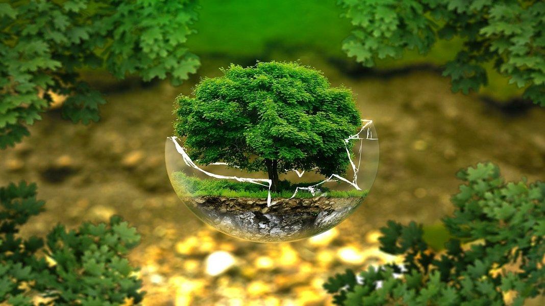 سنكون قريبًا قادرين على الازدهار وإنقاذ الأرض في نفس الوقت. إليك الطريقة