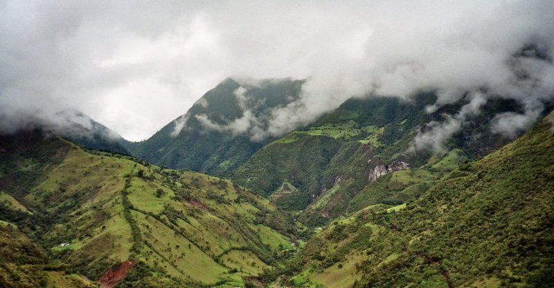 Cloud forests risk drying out by 2060