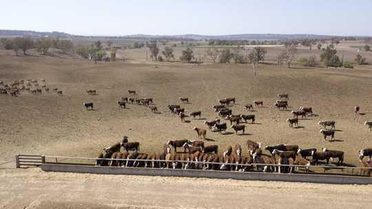 Por que as tentativas de provar a seca na Austrália são um erro