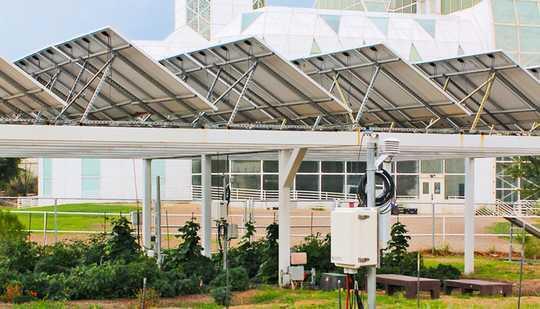การทำฟาร์มภายใต้แผงเซลล์แสงอาทิตย์ช่วยประหยัดน้ำและสร้างพลังงาน