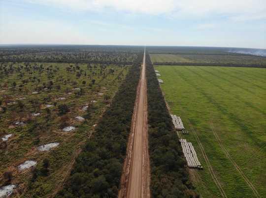 جنوبی امریکہ کا دوسرا سب سے بڑا جنگل بھی جل رہا ہے - اور ماحولیاتی دوستانہ چارکول اس کی تباہی کو سبسڈی دے رہا ہے۔