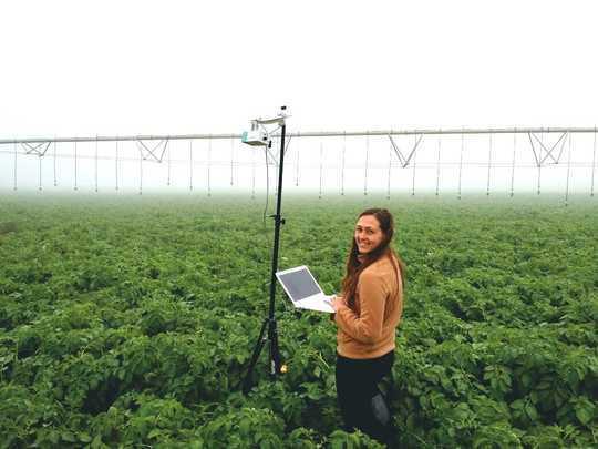چگونه هوش مصنوعی تغییر می یابد راه ما مزرعه