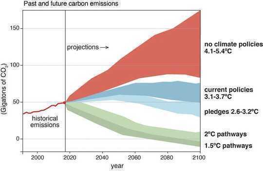 Sal 'n hergroei van 'n gebied in die grootte van die VS help om klimaatsverlies te voorkom?