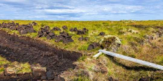 ヨーロッパの炭素に富む泥炭地は、「広く行き渡った」乾燥傾向を示す