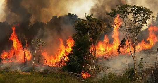 NASA Memperingatkan Aktiviti Manusia Mengeringkan Amazon