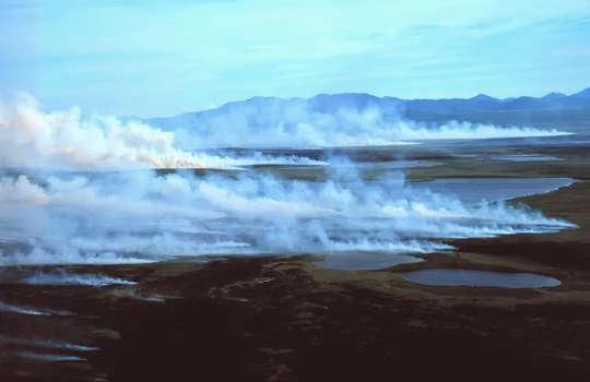 Gambut yang kaya karbon mudah terbakar, menjadikannya bahan bakar yang baik untuk kebakaran yang disebabkan oleh kilat. (perubahan iklim utara trifecta gelombang panas api unggun api mencair)