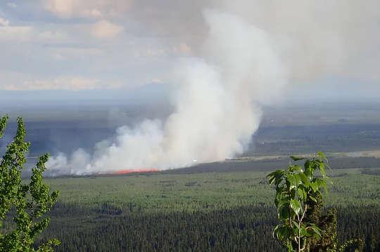 Trifecta Perubahan Iklim Utara: Gelombang Panas, Kebakaran Liar dan Pencairan Permafrost