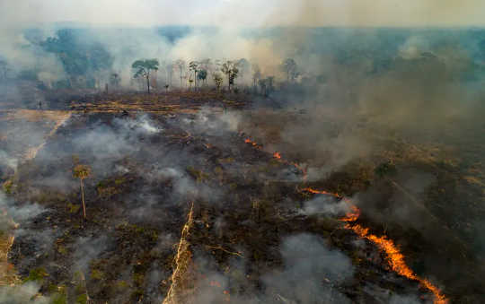Historic Amazon Rainforest Fires Threaten Climate And Raise Risk Of New Diseases