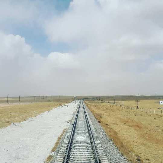 기차로 사우스 햄튼에서 상하이로 이동 – 한 기후 변화 연구원의 비행 방지 노력