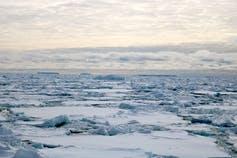 מדפי קרח אנטארקטיים חושפים חתיכה חסרה של פאזל האקלים