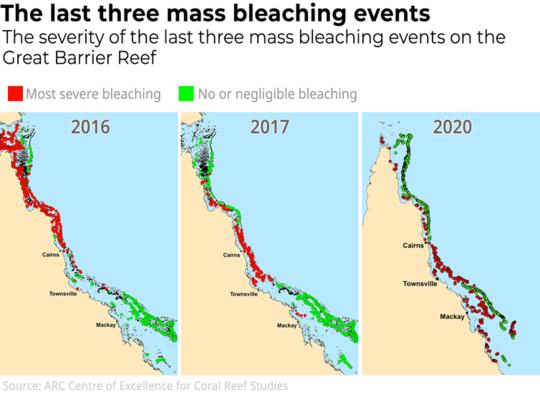 我们只花了两个星期的时间对大堡礁进行考察。 我们看到的是一场悲剧