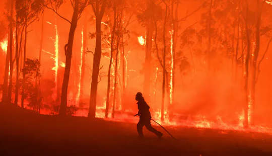 A Staggering 1.8 Million Hectares Burned Australia's Black Summer