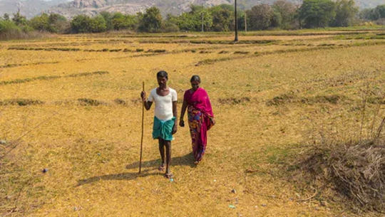 Finding Solutions: How India Farmers Could Switch To More Climate-resilient Crops