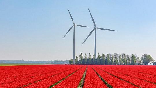 El futuro libre de carbono está al alcance de los EE. UU. Para 2050