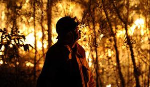 온난화의 세계에서 화재가 증가하고 있으며이를 예측할 수 있습니까?