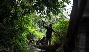 Hur vi upptäckte världens största tropiska torvmark, djupt i djunglerna i Kongo