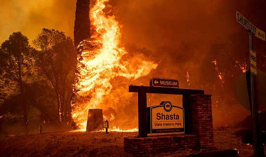 """Una """"tormenta perfecta"""" de factores está haciendo que los incendios forestales sean más grandes y más costosos de controlar"""