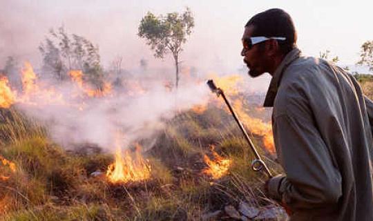 Kan inhemsk kunskap hjälpa oss att hantera viltbränder?