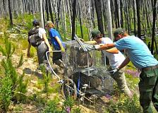 Layanan nasional untuk lingkungan - apa yang dapat dicapai oleh pasukan konservasi muda