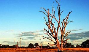 2018-19 was Australië se warmste somer op rekord, met 'n warm herfs waarskynlik ook