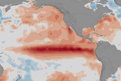 2015-2016 El Niño memicu wabah penyakit di seluruh dunia