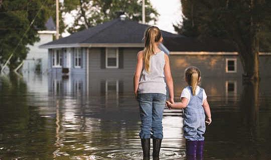 Vi kan inte rädda allt från klimatförändringar - här är hur man gör val