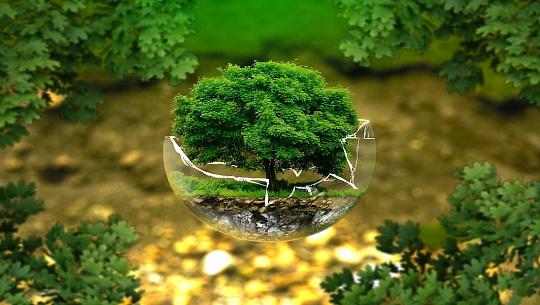 同時に地球を繁栄させ、救うことができるようになります。 方法は次のとおりです