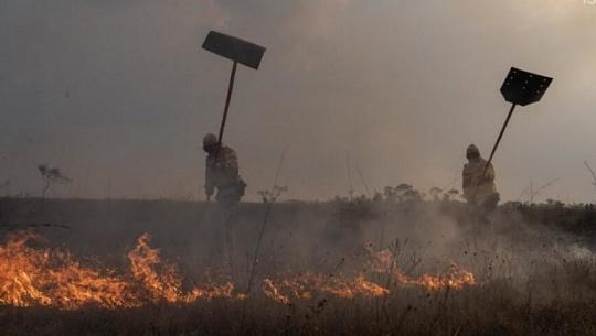 先住民族の消防士がブラジルのブレイズに取り組む