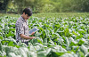 未来の農場が地球を養い、それを癒す3つの方法