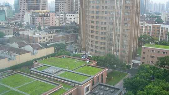 چین کے سپنج شہروں کا مقصد 70 دوبارہ بارش کا پانی استعمال کرنے کے لئے ہے