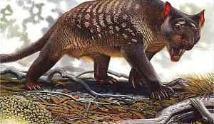 Wakati Mabadiliko ya Hali ya Hewa Alipotea Megafauna ya Australia