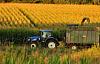 С ходатайством перед Конгрессом люди 100,000 + требуют нового «зеленого дела», которое исправляет нашу продовольственную систему