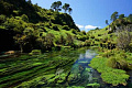 نيوزيلندا تطلق خطة لإحياء صحة البحيرات والأنهار