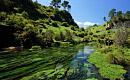 뉴질랜드, 호수와 강의 건강을 되살리기위한 계획 발표