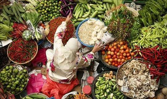 Hur man matar en växande befolkning Hälsosam mat utan att förstöra planeten
