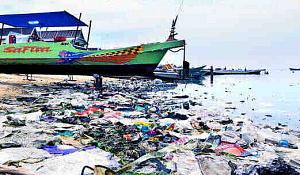 Plastikmüll macht Krankheiten schlimmer für Korallenriffe