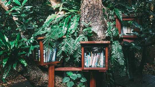 7-Romane zum Klimawandel, mit denen wir uns mögliche Zukünfte vorstellen können