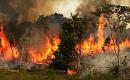 NASA varoittaa, että ihmisen toiminta kuivaa Amazonin