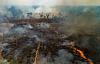 Kebakaran Hutan Hujan Amazon yang Bersejarah Mengancam Iklim Dan Meningkatkan Risiko Penyakit Baru