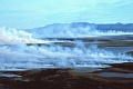 Klimaatshitte smelt Arktiese sneeu en droog bosse droog