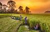 Hvordan nationer kan håndtere miljøkriser ved at skifte prioriteter til bæredygtig udvikling