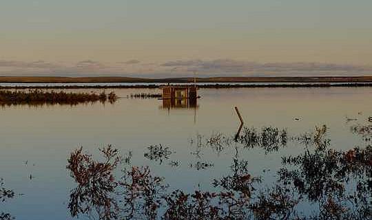 Dies sind die jüngsten Kohlenstoffemissionen der Arktis, die wir für den Klimawandel befürchten sollten