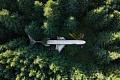 緑の救済策:カーボンオフセットに依存することで、航空会社を汚染する