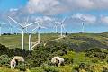 ہمیں اثرات کو تیار کرنے کے ساتھ ساتھ اخراج کو کیوں کم کرنے کی ضرورت ہے