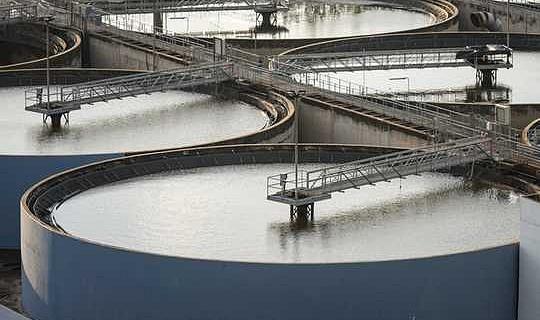 電子レンジ用の下水廃棄物は、作物の肥料として使用するのを安全にする