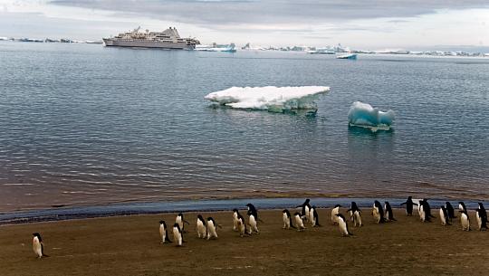 La température en Antarctique monte au-delà de 69 ° F alors que la NOAA rapporte que le mois dernier a été le mois de janvier le plus chaud au monde
